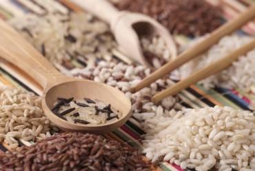 Rodzaje ryżu