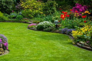 Najpiękniejsze kwiaty do ogrodu na wiosnę