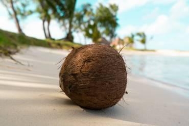 Cenne właściwości masła kokosowego i zastosowanie